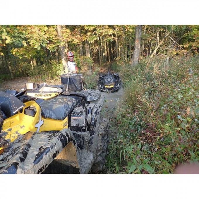 Yes, that is me, stuck. Thanks @webez9 #swampdonkeys