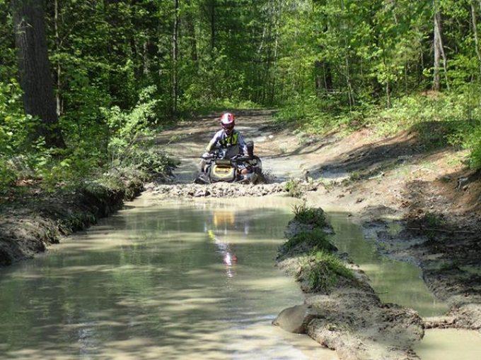#xmr in some muddy water #swampdonkeys